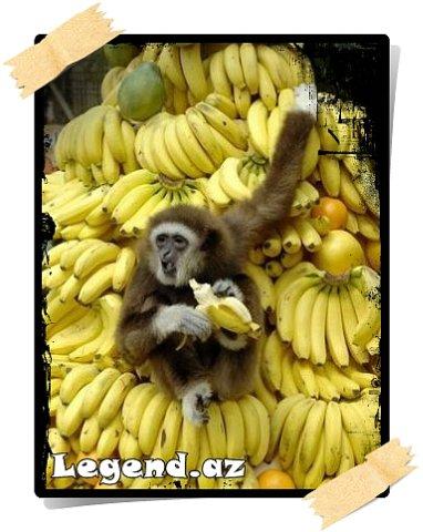 Bananın sağlamlığa xeyiri