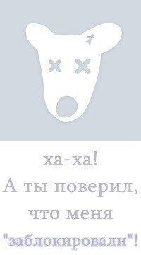 Владик Аникин, 17 октября , Нижнеудинск, id181604805