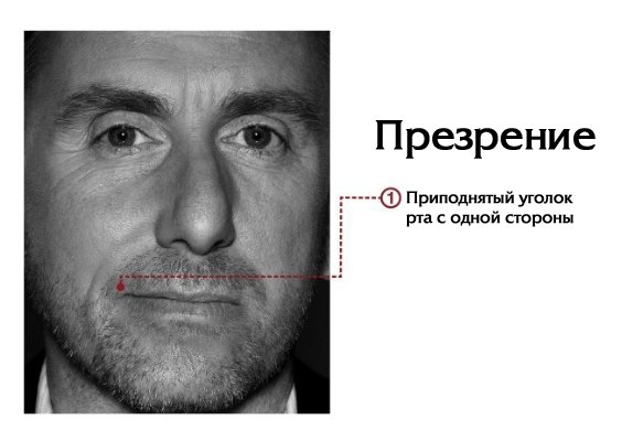 http://cs701.vkontakte.ru/u7481265/68992994/x_59de07b4.jpg