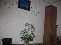 Юрий Crifox, 17 февраля , Киев, id39278754