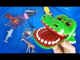 Lots of Zoo Wild Animals in Blue Water Learn Colors For Children With Real Safari Videos