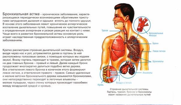 скачать презентация бронхиальная астма у детей