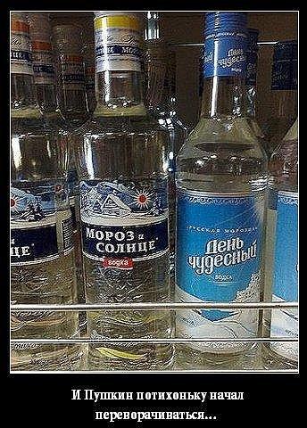 В случае дальнейшего давления на Украину ЕС наложит эмбарго на российскую водку, - евродепутат - Цензор.НЕТ 6167