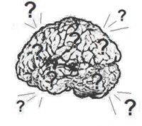 Мозг Брейль, 4 ноября 1983, Омск, id54984845