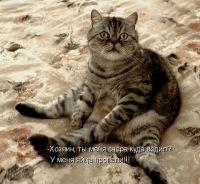 Максим Макаров, 1 января , Волгоград, id110707778