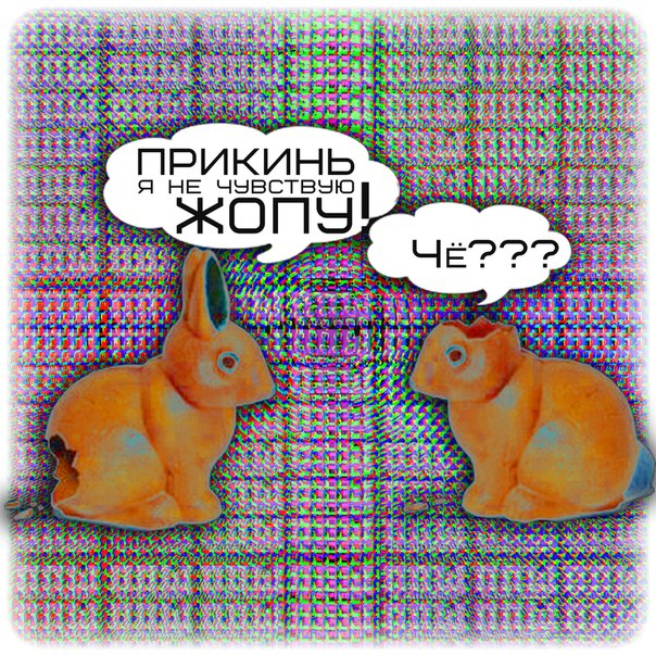 -zoMK4sqEKw.jpg
