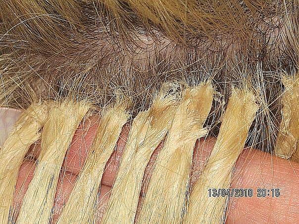 Наращивание волос ленточное или капсульное