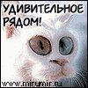 Сага Мага, 11 января 1991, Харьков, id81752953