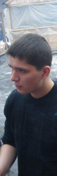 Димусик Мишусик