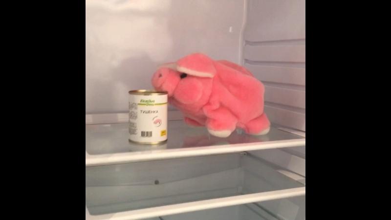 Что хранится в холодильнике ЦСКА😂👍