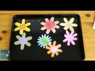 Весёлый эксперимент с бумажными цветами 🌸 vk.com/luckycraft – подпишись!