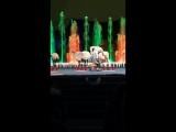 Цирк Аквамарин
