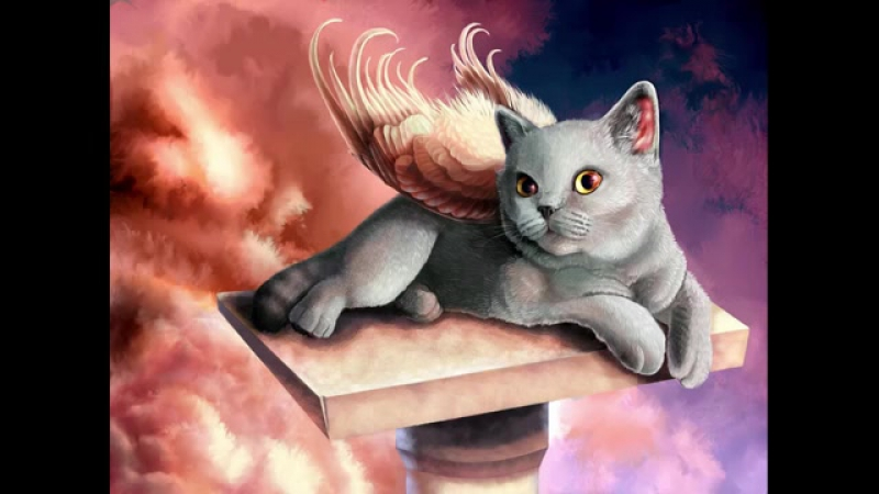 АСМР Шепталка - засыпашка. Магия Кошки.(1).anot