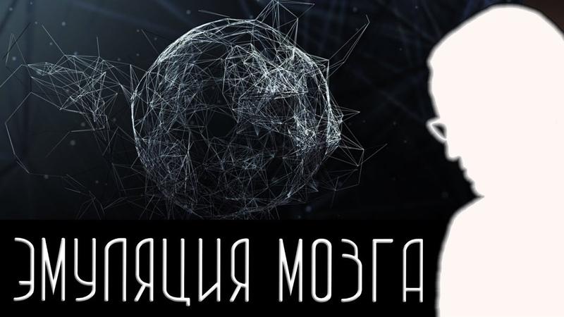 Эмуляция головного мозга [Новости науки и технологий] » Freewka.com - Смотреть онлайн в хорощем качестве