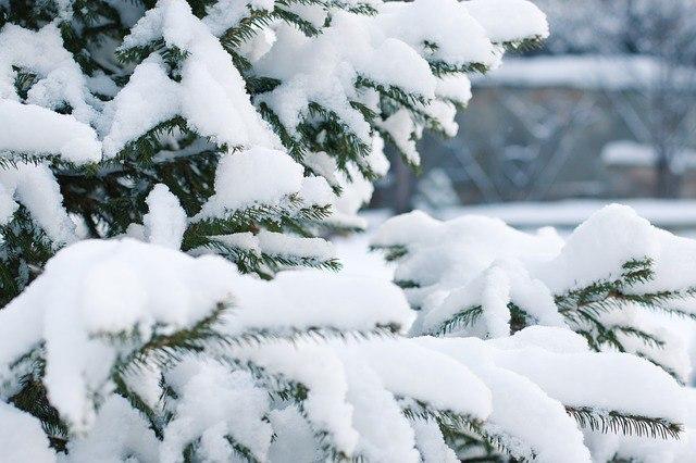 Синоптики рассказали, какой будет новогодняя ночь в Башкирии