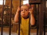 Сергей Север - Я родился в тюрьме (песня) 360p