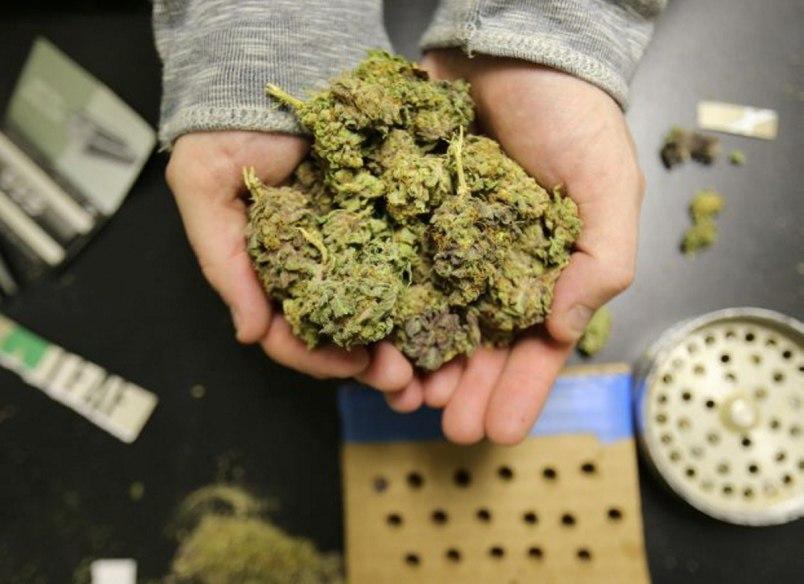 Житель Даусуза хранил более 6 кг наркотиков