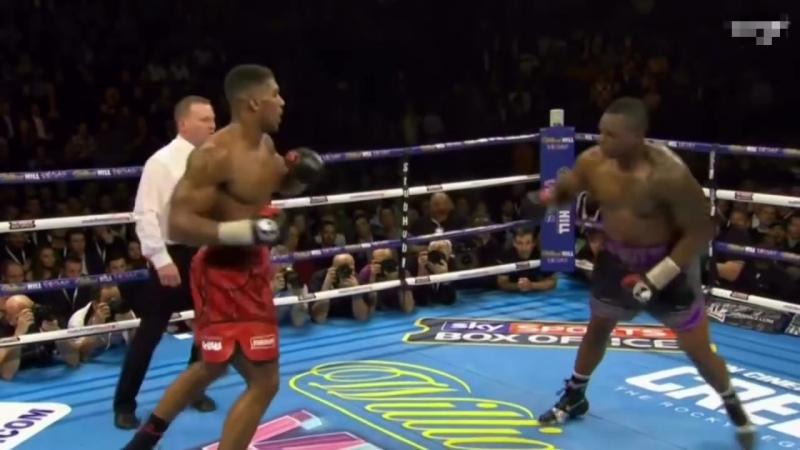 The Best Chicken Dances in Boxing
