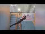 SLs Super Flexible Girls - gymnastics and calisthenics female moments 2017