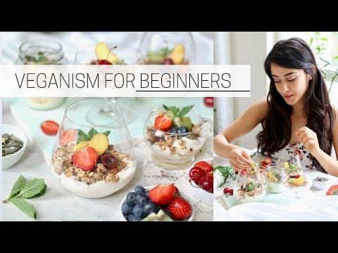 BEGINNER'S GUIDE TO VEGANISM how to go vegan