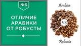 Различия Арабики и Робусты | Какой кофе лучше и в чем разница☕