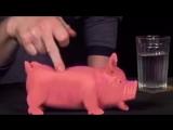 Гоблин, Жуков и красные свиньи