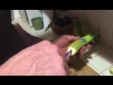 оЧУмелые ручки