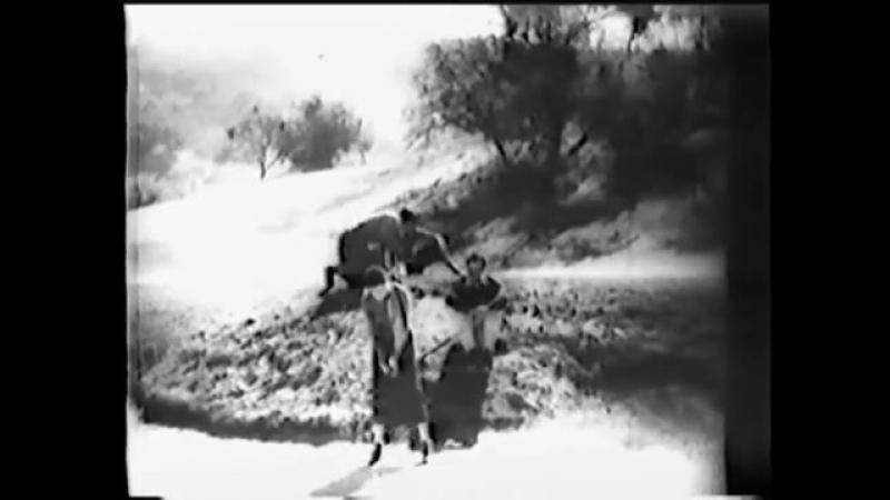 Good Sport (1931)