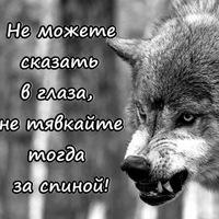 Анкета Виктор Захаров
