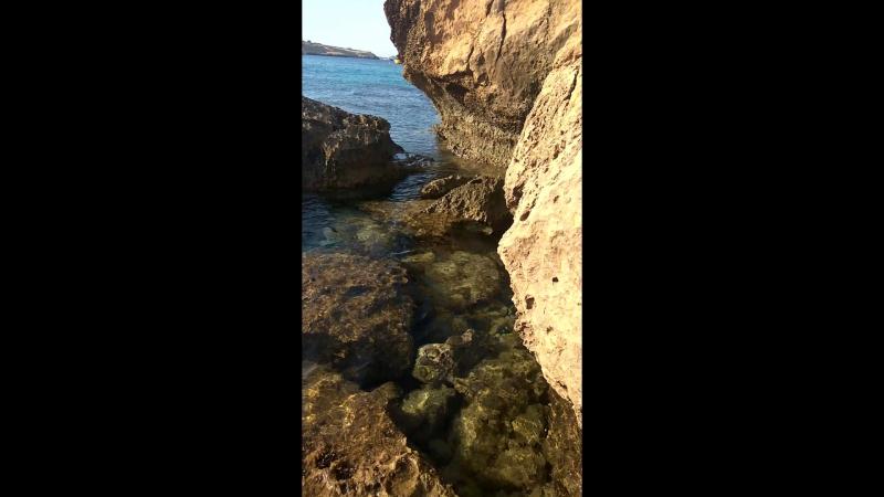 косолапие и камни