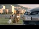 Лучшая нарезка ржачной рекламы Смешная р...кол Умора (240p).mp4