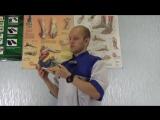 Специалист Sursil ORTHO о детской ортопедической обуви. Спешите приобрести в сети магазинов Основа Движения.
