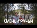 20170924 Оленьи ручьи