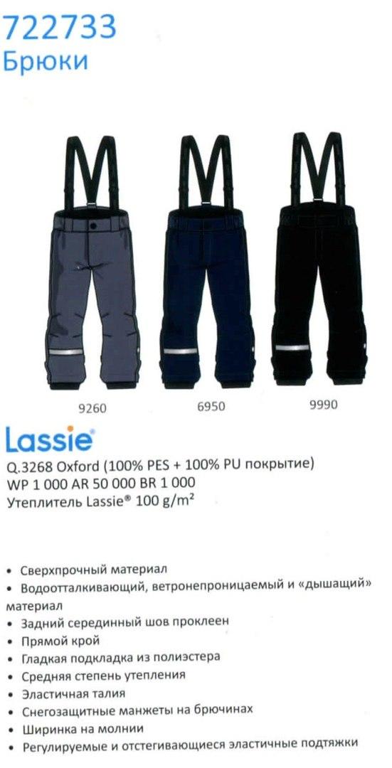 Зимние штаны 722733-9990