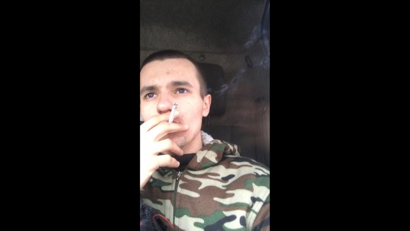 Владислав Дикий — Live