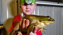 Catch and Cook FROGS, CRAW FISH CATFISH!