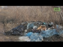 Свалки сдавайтесь Нижневартовске экологи объявили войну стихийным мусоркам