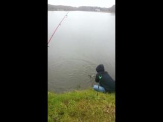 Рыбалка в Высоково 29.10.17 (1)