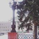 Ольга Мякотина фото #31