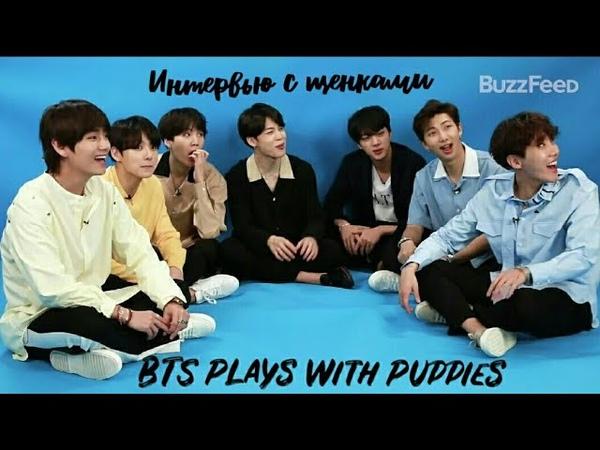 [Озвучка]BTS Plays With Puppies/Интервью с щенками