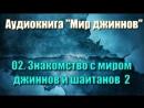02. Знакомство с миром джиннов и шайтанов 2 (аудиокнига 'мир джиннов')
