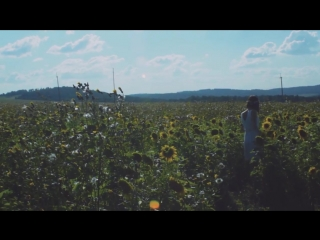 Подсолнуховое поле - Something simple