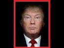 [480x640] Журнал Time разместил на обложке совмещенные в один портреты Путина и Трампа - Новости