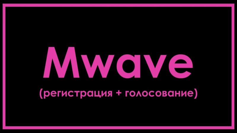 Mwave (регистрация и голосование в приложении)