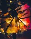 Света Кей фото #14