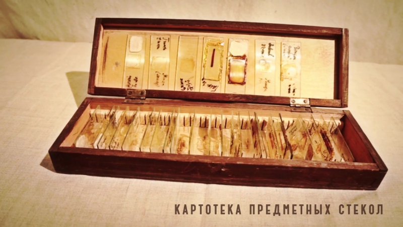 картотека предметных стекол