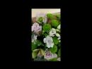 Цветочки от Салона Мича
