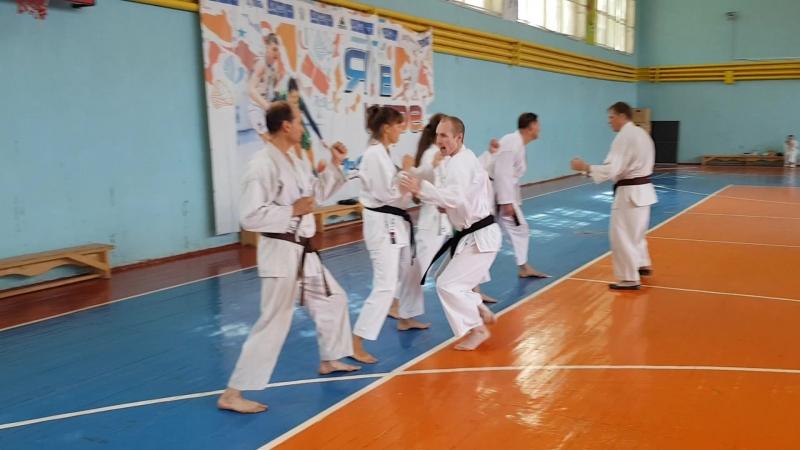 Поточные методы тренировок на Гашуку Фудошин додзё каратэ JKA Russia под руководством сенсея Жаворонкова Дмитрия 5 Дан JKA