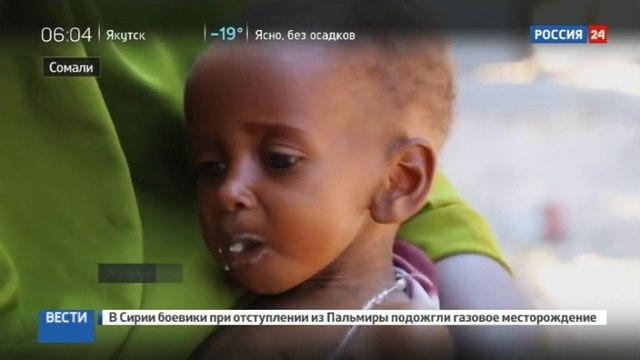 Новости на «Россия 24» • В Сомали за двое суток не менее 110 человек погибли от голода