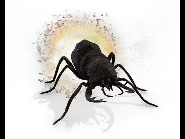 Primeval - Jurassic Beetle